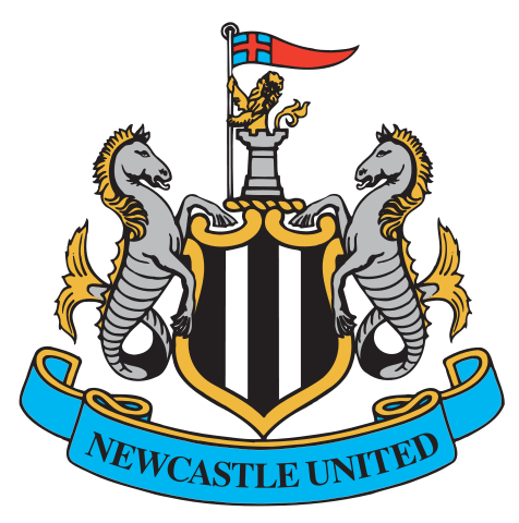 Newcastle United logo - Premier League Heroes